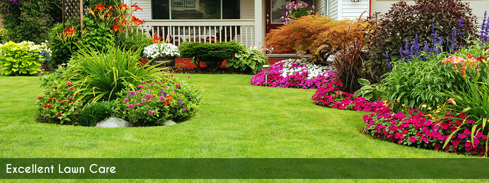 Dependable Lawn Care. Lawn care services for Adams, TN and ...